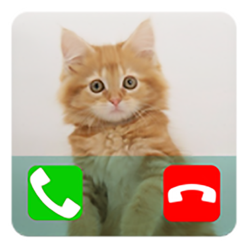 Fake Call From Cat Prank (Calling Prank From Pet)