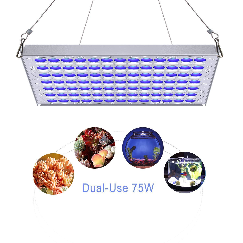 TOPLANET 75W Lampara de Cultivo Luces para Acuarios Azul Blanco Uso Dual para Jardín de Interior Greenhouse Hydroponics para Piscis Coral: Amazon.es: ...