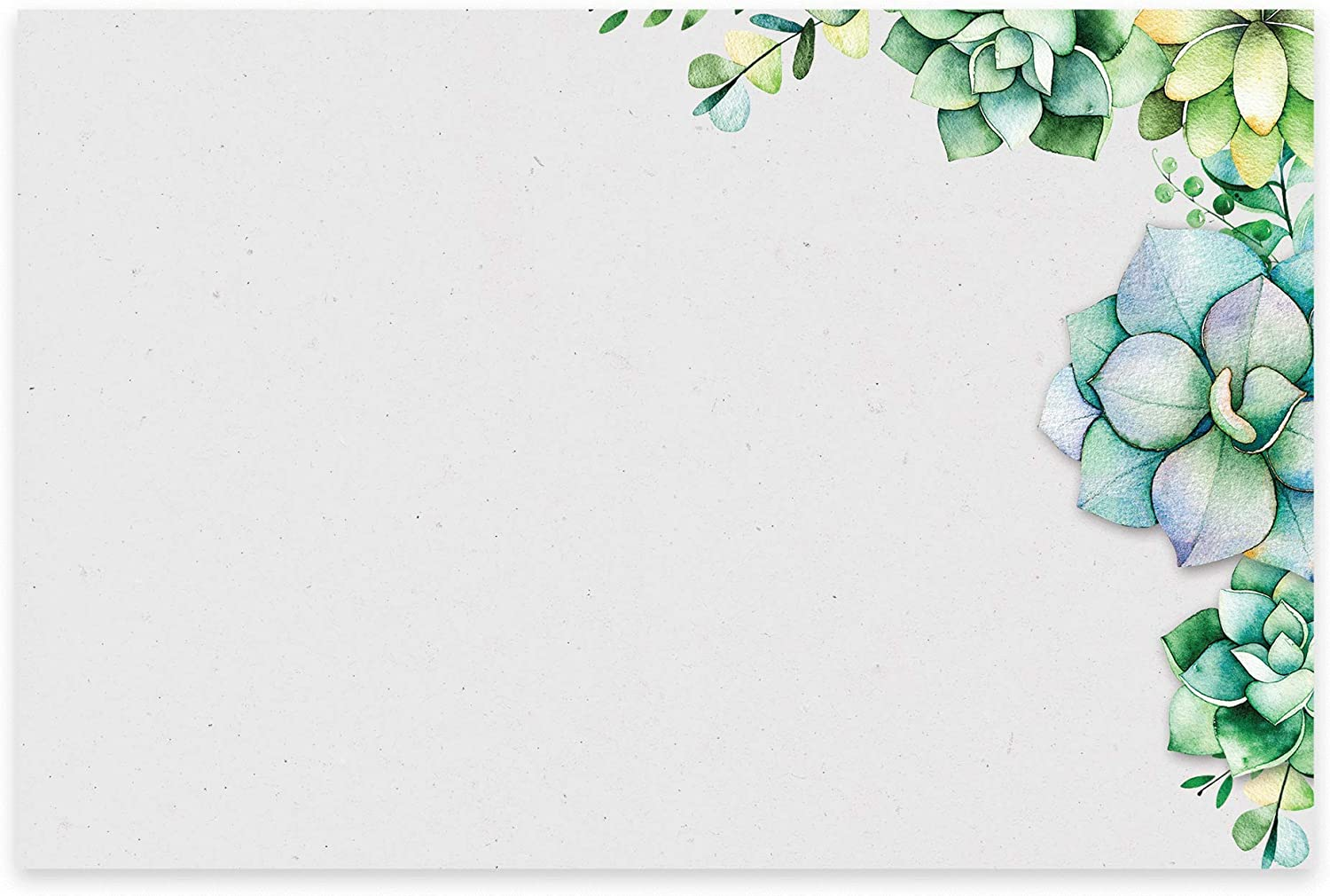 Succulents Note Cards, A6, 4 x 6 inches, The Gift Collection, Set of 48