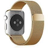 Fintie Apple Watchベルト マグネットロック設計 ステンレス留め金製 42mmメッシュバンド アップルウォッチストラップ for Apple Watch Series 1 Series 2 42mm All Models (No Buckle Needed)- ブラスゴールド