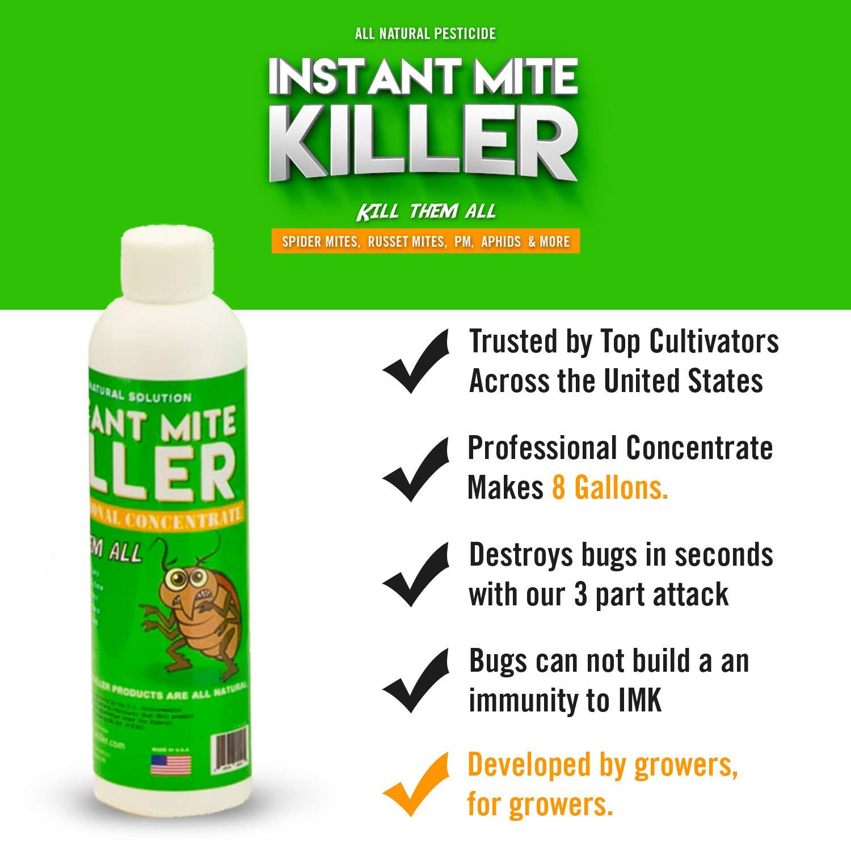Amazon.com: Instant antiácaros Killer Super Concentrado 8 oz ...