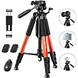"""JOILCAN 65""""Camera Tripod for Canon Nikon Lightweight Aluminum Travel DSLR Camera Stand 11 lbs Load with Universal Phone…"""