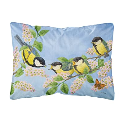 Caroline's Treasures ASA2203PW1216 Great Tit Family of Birds Fabric Decorative Pillow, 12H x16W, Multicolor : Garden & Outdoor