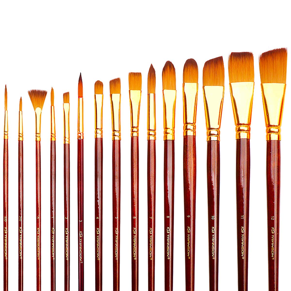 Transon Professional Art Paint Brush Set with Case 15pcs for Artists Watercolor, Acrylic, Gouache, Oil Painting, Tempera and Body Painting