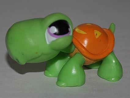 Amazon.com: Tortuga # 433 (carcasa verde, púrpura ojos ...