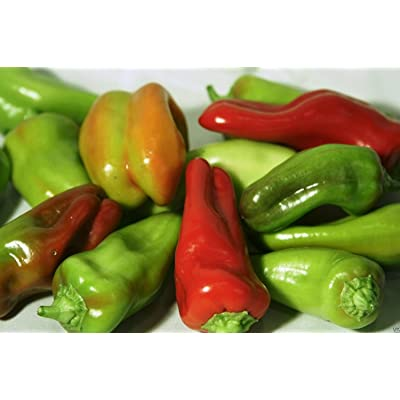 Pepper Sweet, - Cubanelles Or Italian Sweet Frying Pepper, 50 Organic Seeds : Garden & Outdoor