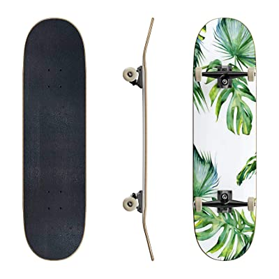 EFTOWEL Skateboards Seamless Watercolor Illustration of Tropical Leaves Dense Jungle Classic Concave Skateboard Cool Stuff Teen Gifts Longboard Extreme Sports for Beginners and Professionals : Sports & Outdoors