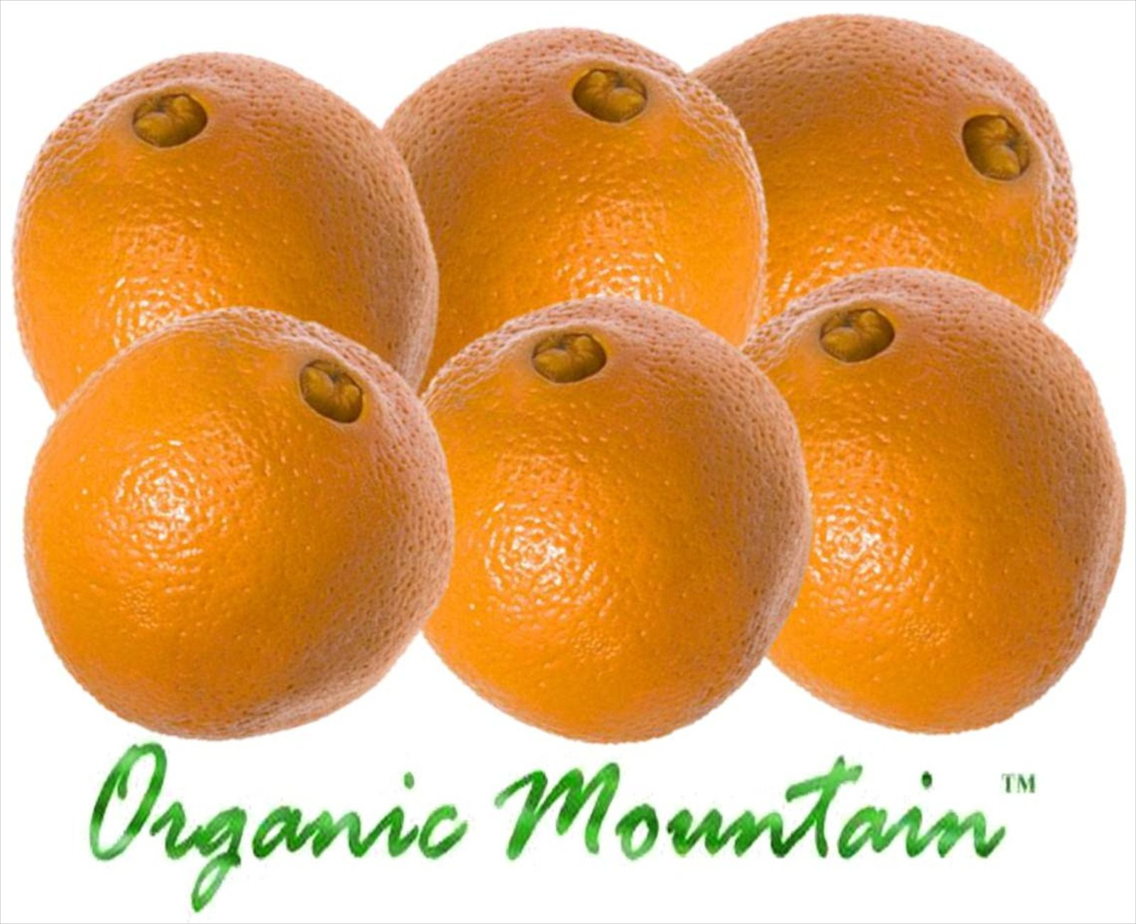 Navel Oranges from Organic Mountain by Organic Mountain (Image #1)