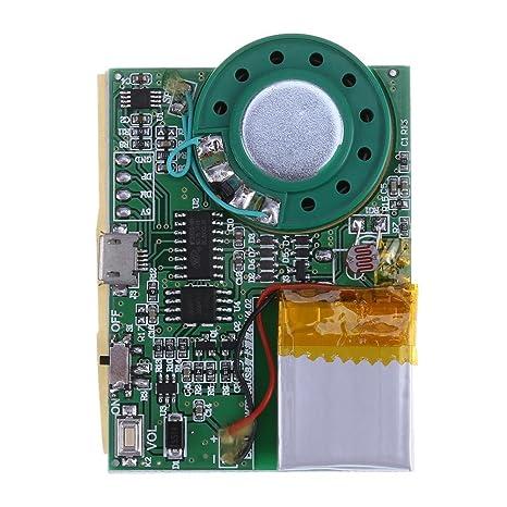 Lookthenbuy Programmierbare Grußkarte Sound Chip Diy Music Board Modul Mit Wiederaufladbarer Lithium Batterie