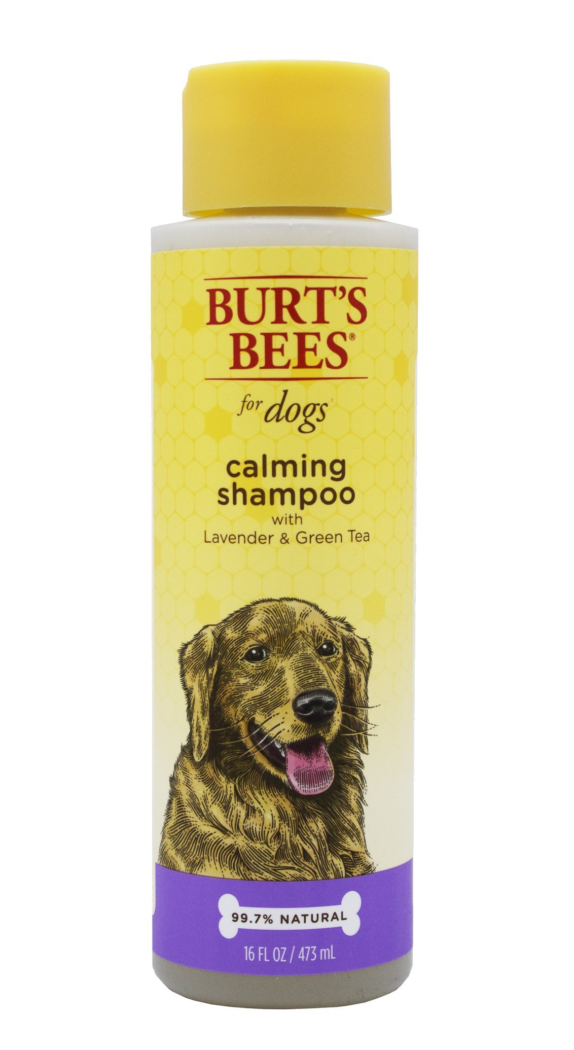 Burt's Bees for Dogs Natural Calming Shampoo with Lavender and Green Tea | Puppy and Dog Shampoo, 16 Ounces