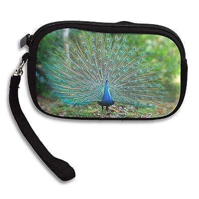 Amazon.com: Pequeño monedero Peacock – Dream Significing ...