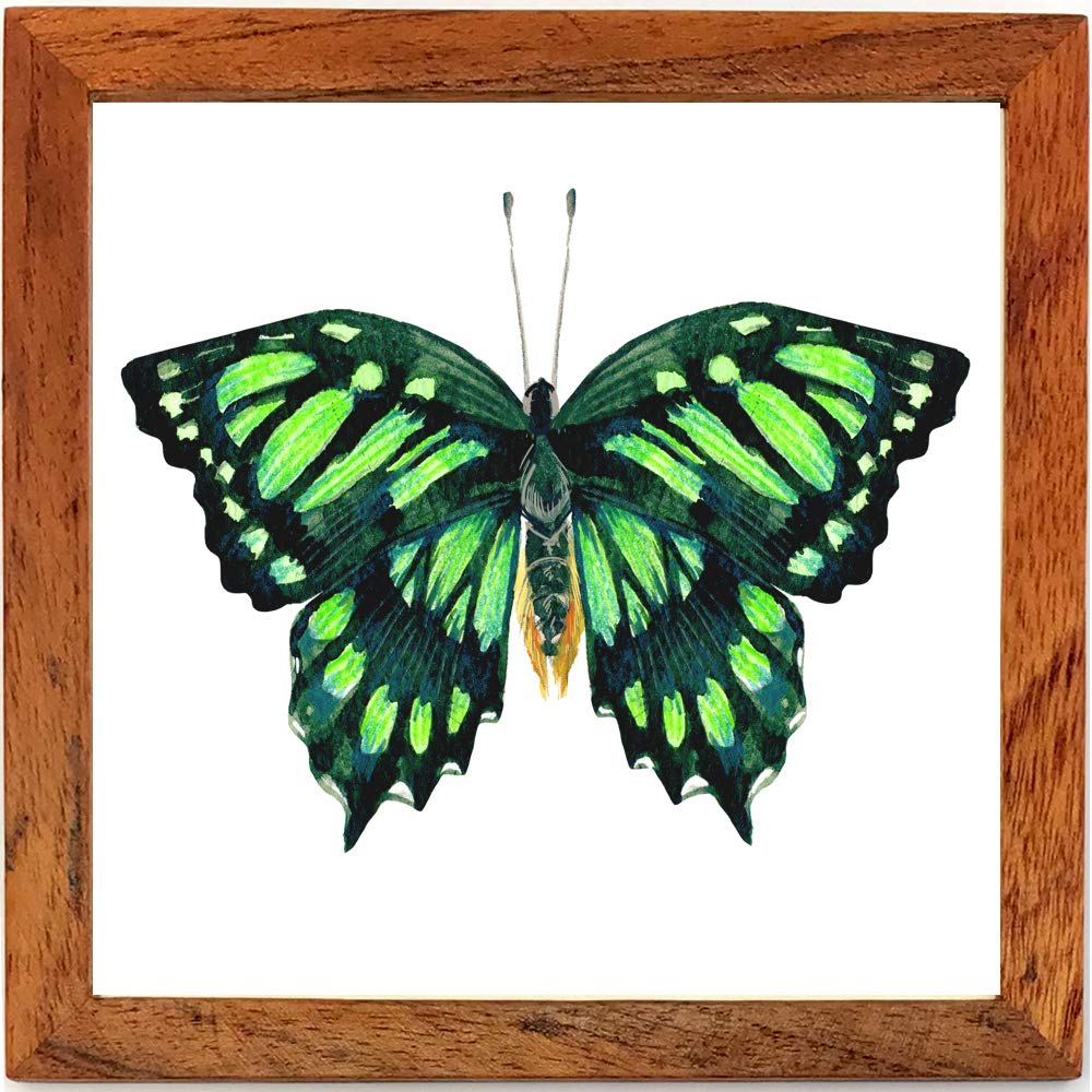 with Wooden Frame One Minute 3. Set of 4 Framed Watercolor Art Print 5.5x5.5 for Wall Decor or as Nice Stylish Gift for Any Occasion Butterflies Ready to Hang Installation. OM