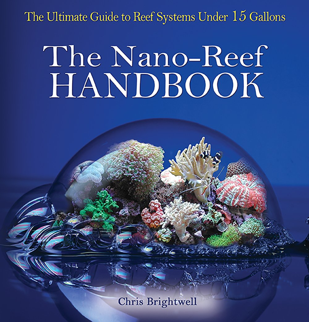 Saltwater aquarium setup |. Hobbyist guide: setting up a nano.