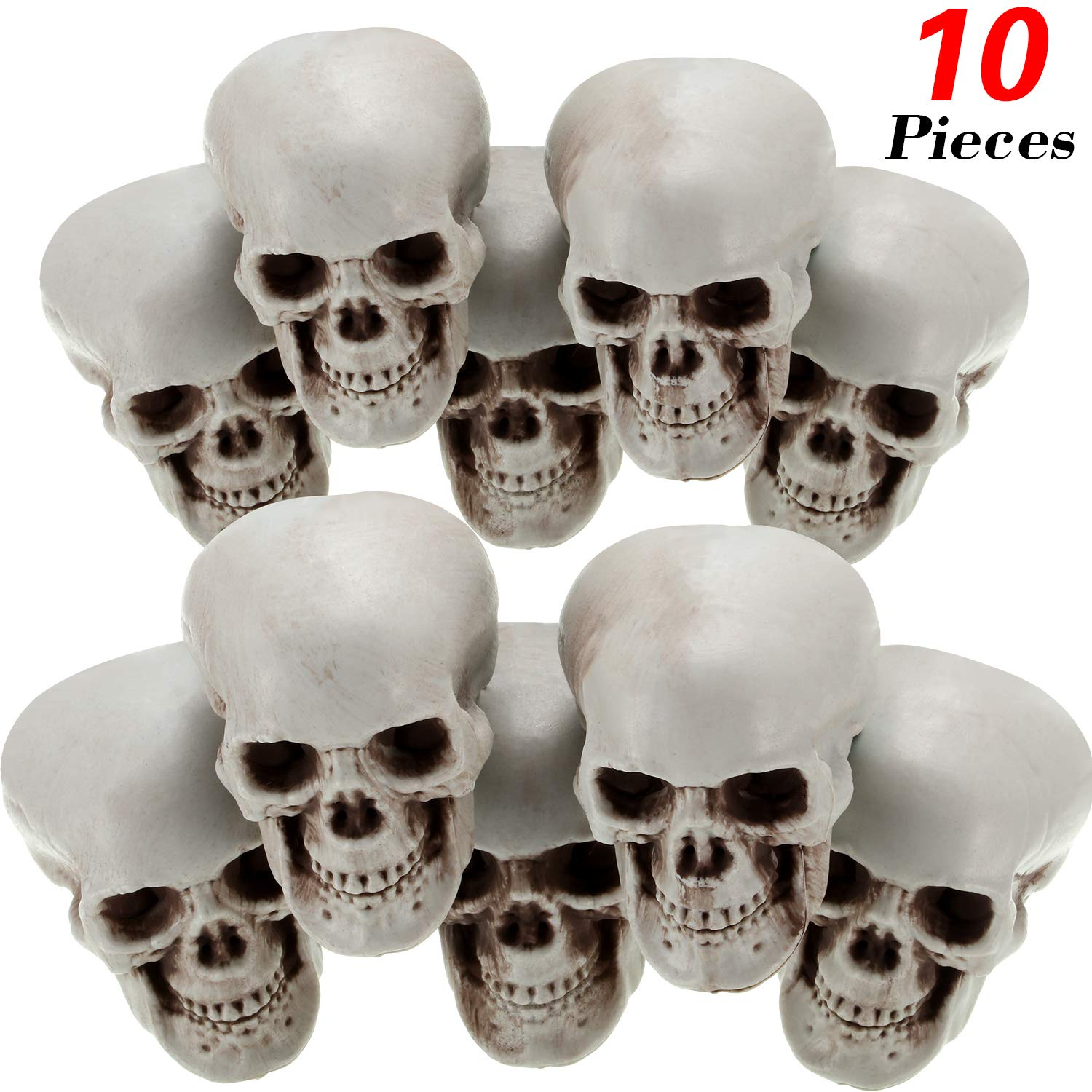 Halloween Skulls Human Skeleton Head Skull Head Realistic Skeleton Skulls for Halloween Home Table Decor (10, Mini) by Gejoy
