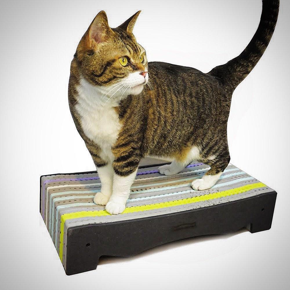 BlackHole Rainbow Cat Scratcher-Bed Type, Less Debris, Premium EVA Foam Scratcher Lounge, Eco-friendly (Black Color) by BlackHole Litter Mat