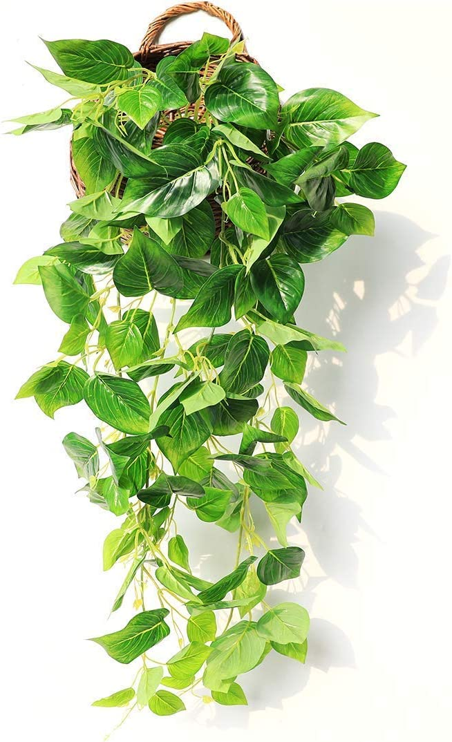 Amazon Com Justoyou Artificial Hanging Plants Ivy Vine Fake Leaves Greeny Chain Wall Home Room Garden Wedding Garland Outside Decoration 3ft 1pcs Scindapsus Vine Kitchen Dining