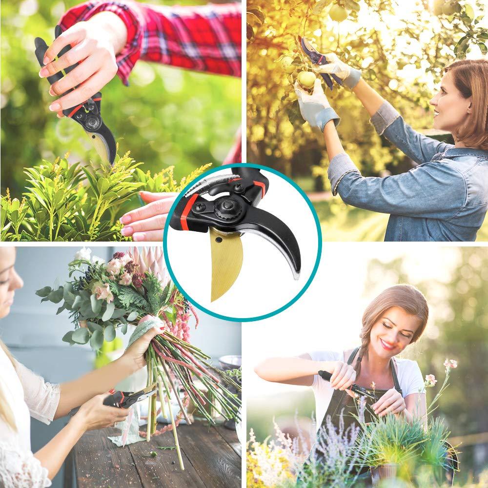 Achort S/écateur Jardin Professionnel Cisaille de Jardin en Titane de