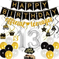Official Teenager Birthday Decorations for Boys 13th Birthday Party Decorations Black Gold with Official Teenager Banner…