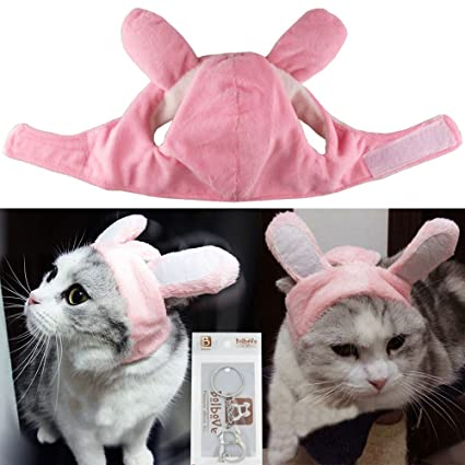 Brou0027Bear Bunny Rabbit Hat with Ears for Cats u0026 Small Dogs Party Costume Accessory  sc 1 st  Amazon.com & Amazon.com : Brou0027Bear Bunny Rabbit Hat with Ears for Cats u0026 Small ...