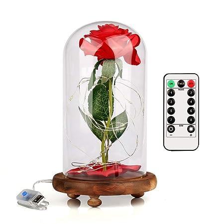 Bella y la Bestia, Rosa de Seda Roja y Luz de Hadas LED con Pétalos Caídos en Cúpula de Cristal sobre una Base de Madera Regalo para el cumpleaños del ...