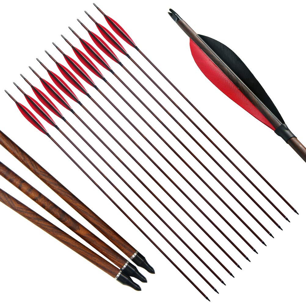 PG1ARCHERY 30 inch Archery Carbon Targeting Arrows Hunting Practice Arrow Sports 5'' Turkey Feather Fletching with Replacement Points Tips for Recurve Compound Bow Black Red, 12 Pack
