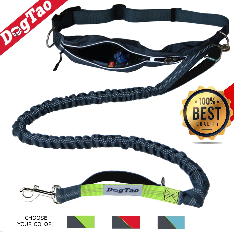 DogTao • Hunde Joggingleine mit Bauchgurt - Anti-Shock Jogging Hundeleine für Große und Kleine Hunde - Elastische, Reflektierende und Starke Laufleine Bluejet