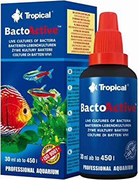 Tropical Bacto Active Live Cultures Of Bacteria For Freshwater And Marine Tanks 100ml Bottle Amazon Co Uk Pet Supplies