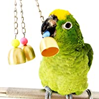 BWOGUE Bell Bird Toy Parrot Cage Toys Cages African Grey Amazon Cockatiel