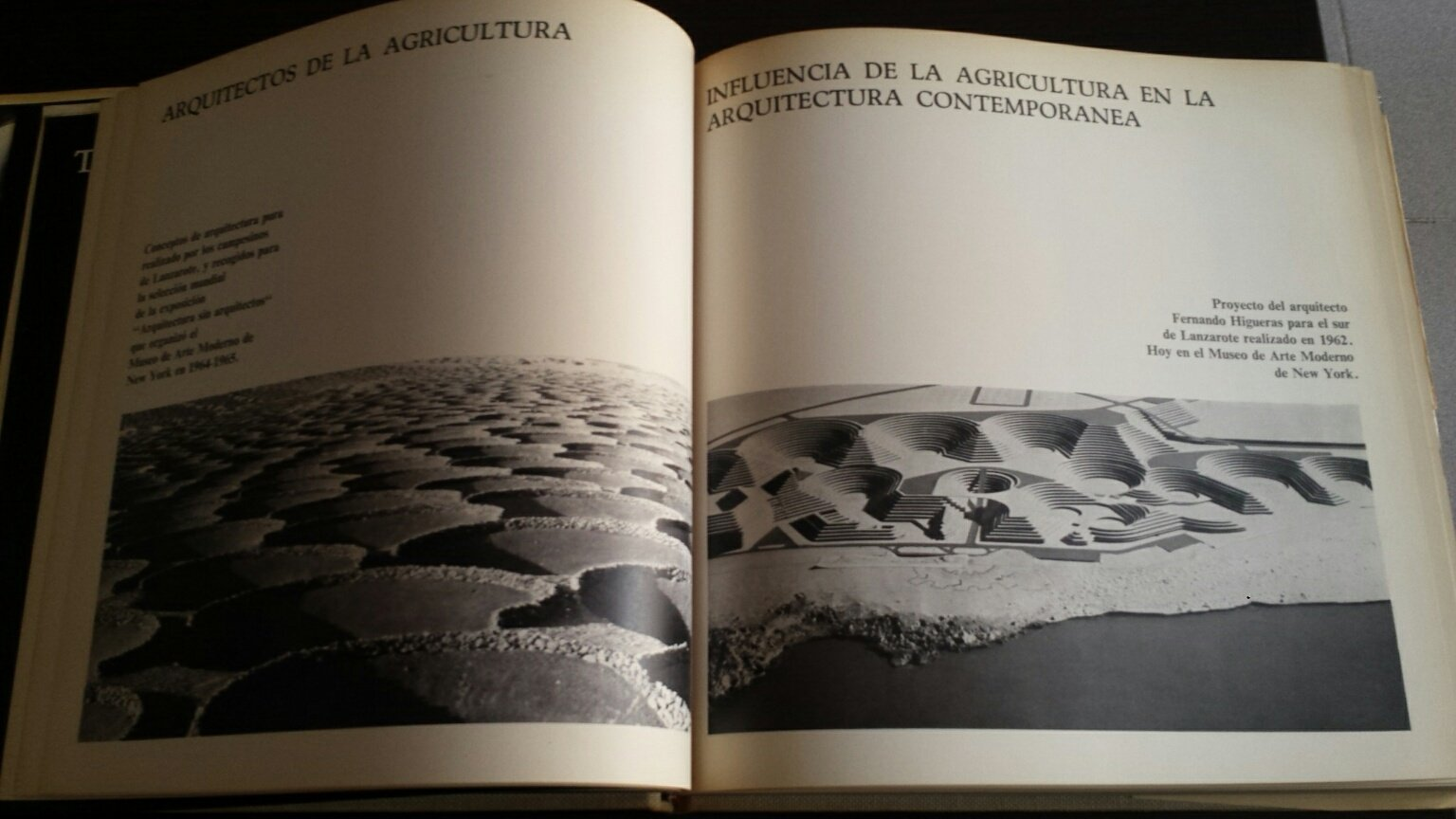 Lanzarote: arquitectura inedita: Amazon.es: Cesar MANRIQUE ...