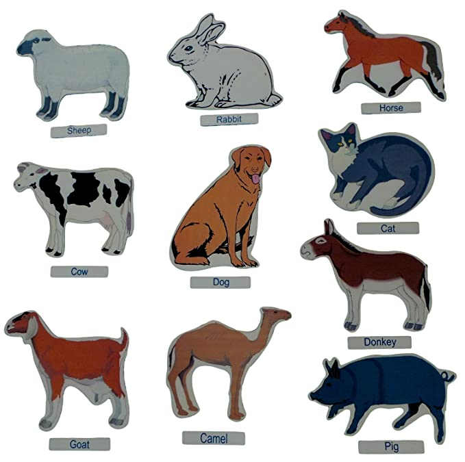 Buy Kido Toys Pet Animals Cut Outs Jumbo - Wall Decoration