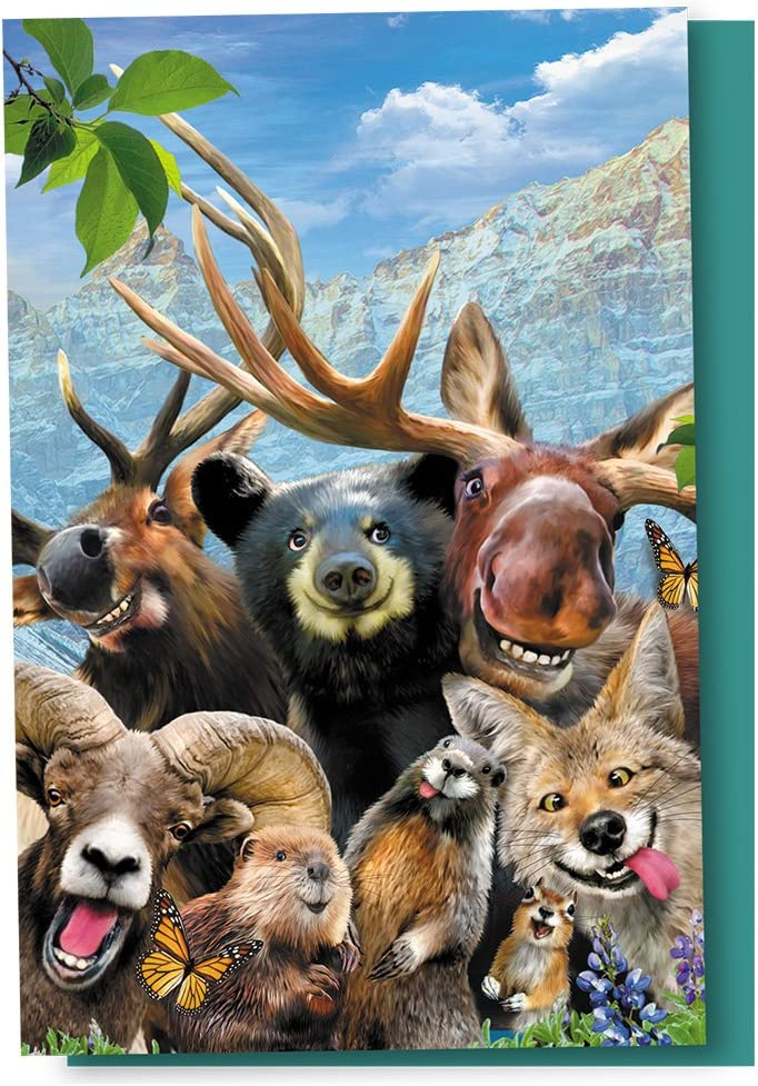 Tree-Free Greetings EcoNotes 12 Count Rocky Mountain Selfie All Occasion Notecard Set with Envelopes 4 x 6 Inches FS56909