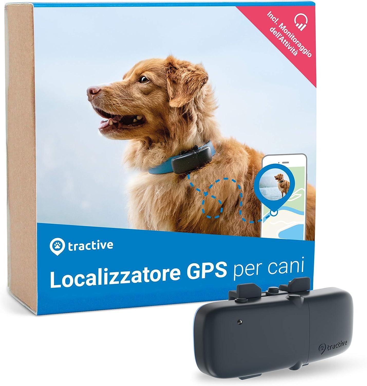 Nuovo localizzatore Tractive GPS per cani 2019 con monitoraggio dell'attivit�