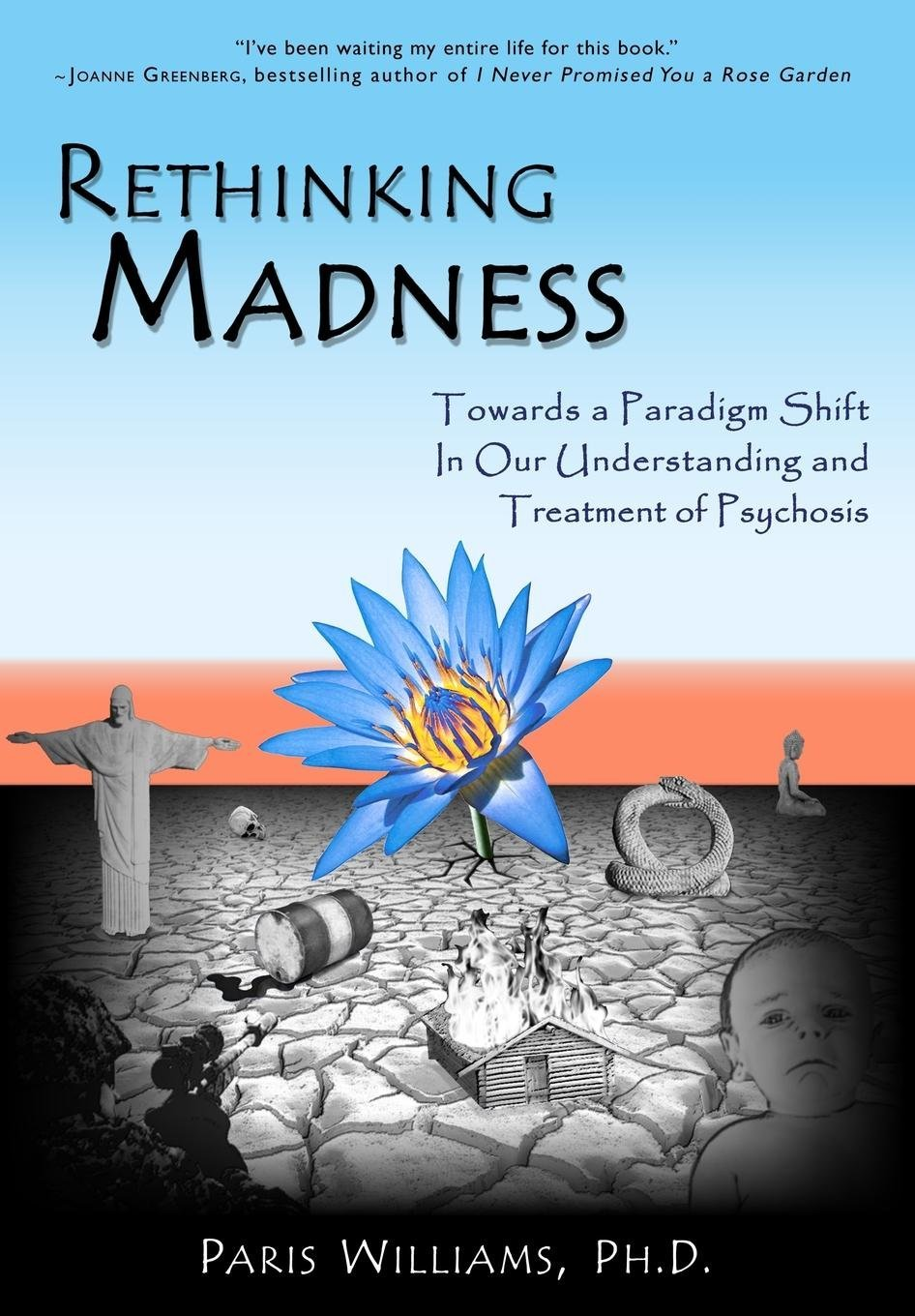 Rethinking Madness: Towards a Paradigm Shift in Our Understanding
