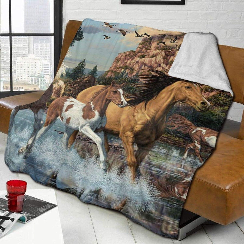 DPQZ Sherpa mantas de forro polar indio caballo de guerra acuarela reversible súper suave y acogedora manta de felpa para cama/sofá 80 x 60 pulgadas