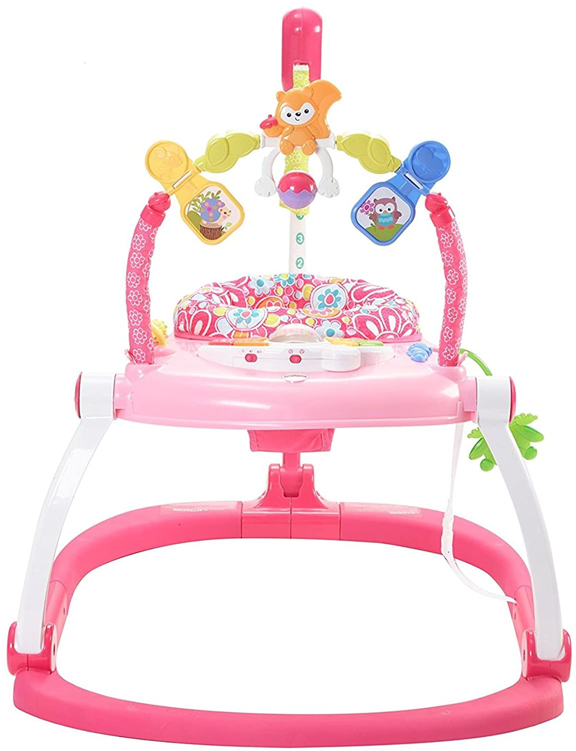 Fisher-Price Floral Confetti SpaceSaver Jumperoo Amazonca/FISNE DKT02