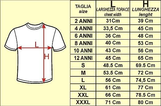 t-shirt PALERMO sport maglietta calcio ultras tifosi