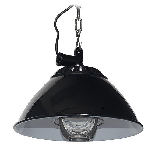 Amazon.com: cocoweb Sunbury – Lámpara de techo con jaula ...