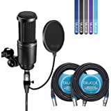 Audio-Technica AT2020 Cardioid Condenser Studio Microphone - INCLUDES - Blucoil Pop Filter, 2 Pack of 20 Ft XLR Cables AND 5 Pack Cable Straps