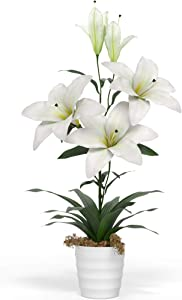 "Barnyard Designs Artificial Peace Lily in Small White Pot, Large Indoor Faux Potted House Plant for Home, Office, or Parlor Decor, 26"" Tall"