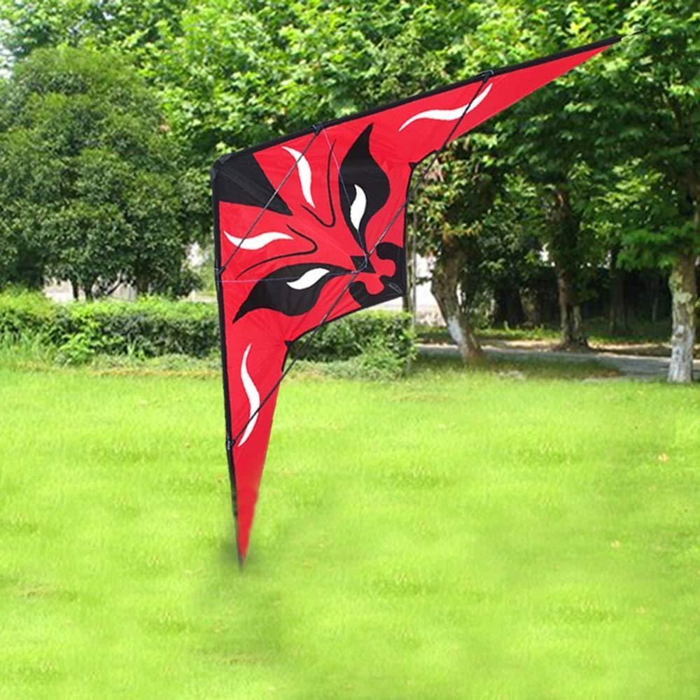 2.2m Flying Dragon Kites Dual Line Stunt Kite Surf Birds Kite Eagles 3D Home Art Angel Kite