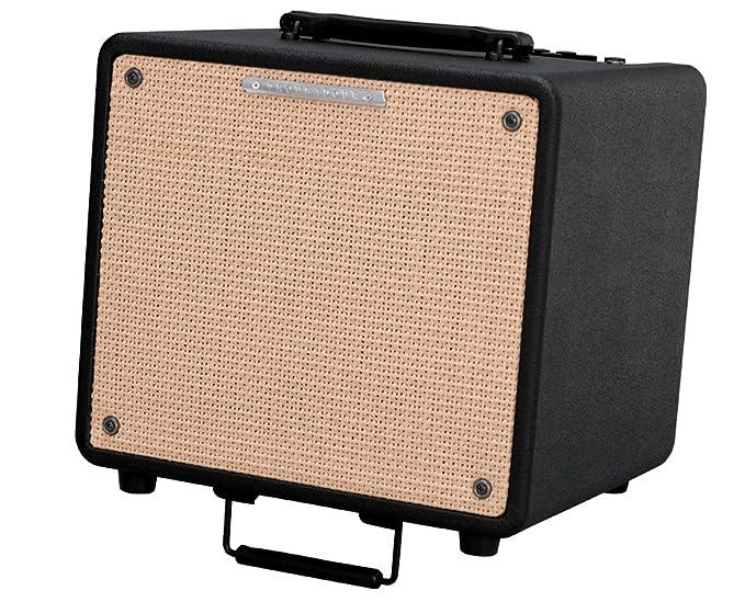 Ibanez T80N Troubadour - Amplificador acústico (80 W ...