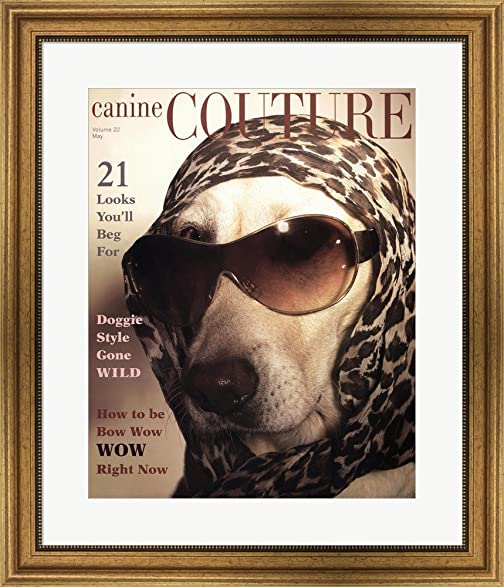 Amazon.com: Canine Couture Bow Wow by IHD Studio Framed Art Print ...