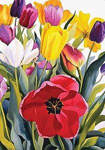 Toland Home Garden 109601 Tulip Garden 28 x 40 Inch Decorative, House Flag-28