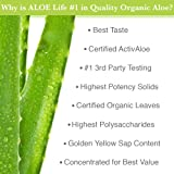 Aloe Life - Whole Leaf Aloe Vera Juice Concentrate, Supports Occasional Indigestion, Bloating, Regularity, Energy and Optimum Health