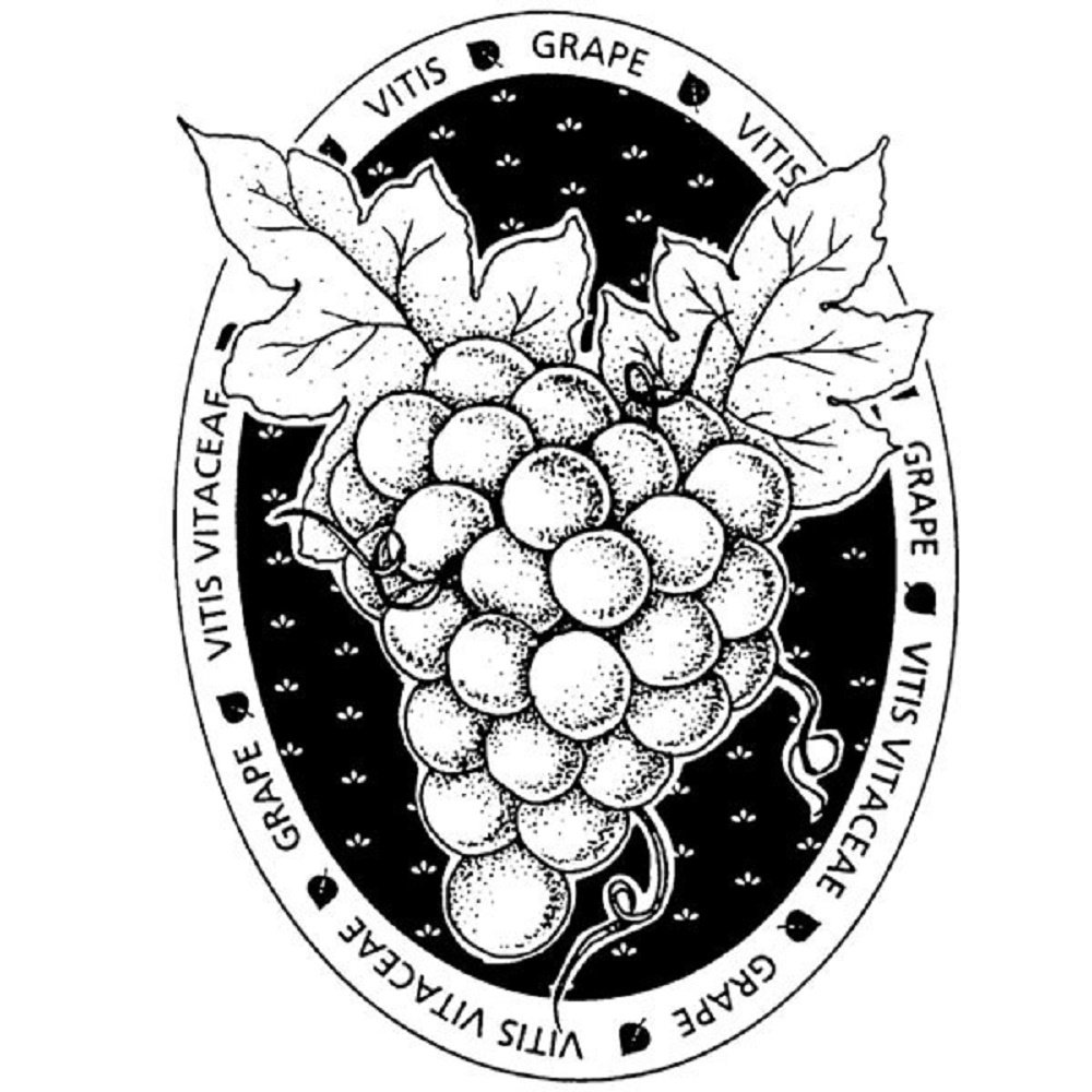 Stampington And Co Wooden Rubber Stamp Grape Leaves Seal Label
