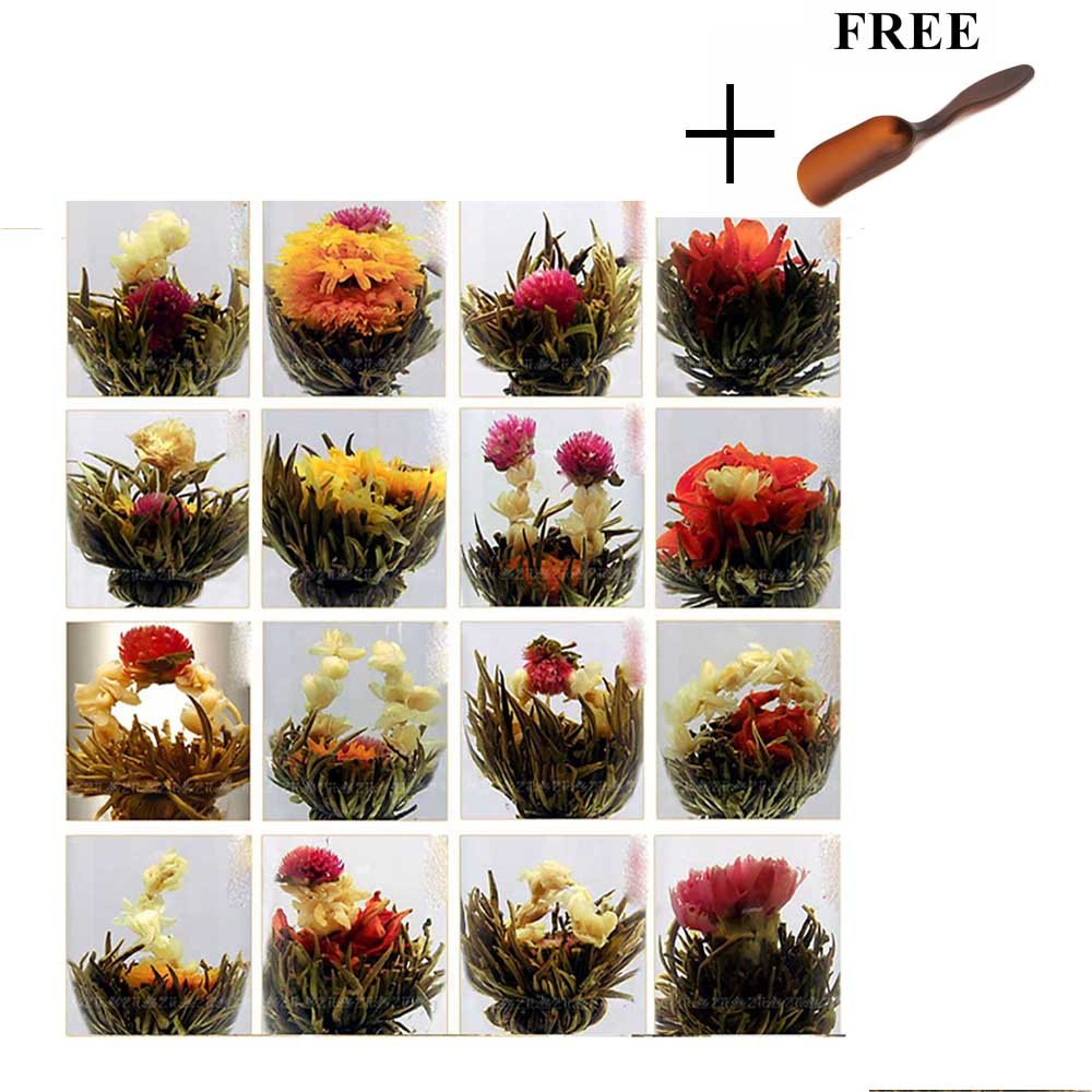 Amazon 10 blooming flower tea 5 jasmine and 5 green huntgold 10ps a pack random chinese green artistic blooming flowering flower tea ball izmirmasajfo