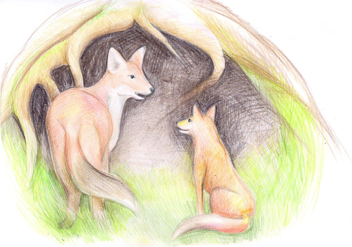 Der kleine Fuchs Poco, der auszog um herauszufinden, was das Wichtigste aus der Welt ist
