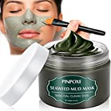 Blackhead Remover Maske, Mitesser Maske, Anti Aging Mask, Gesichtsmaske mit Algen, gegen unreine Haut, Akne, fettige Haut& Mitesser, 100% Natural Gesicht & Körper Maske, 120g/4.23 fl.oz