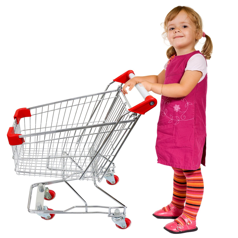 Emmzoe ''The Little Shopper'' Real Life Kids Mini Retail Grocery Shopping Cart Toy (Chrome Frame)