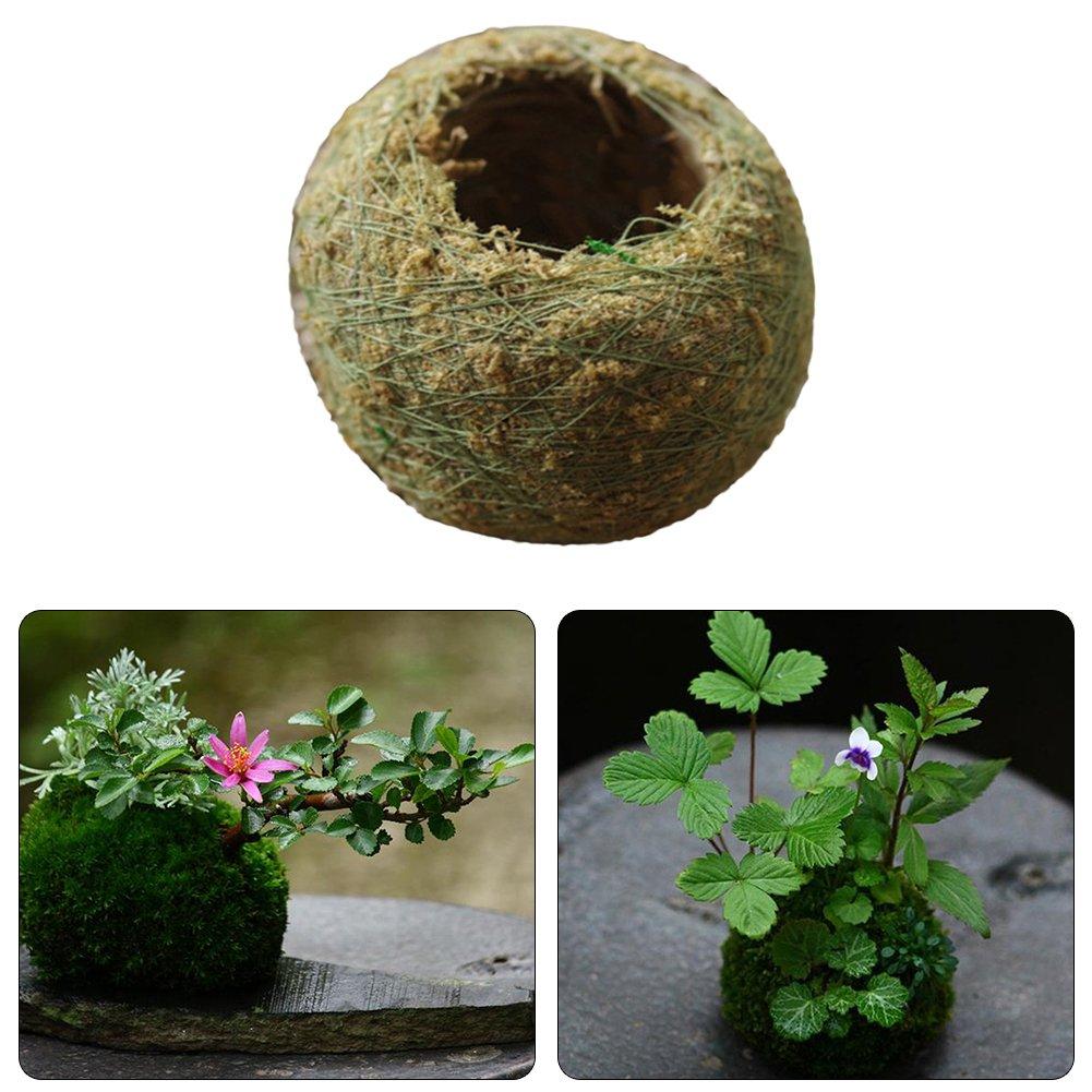 Pot de Fleur Original Naturel Moss Ball Boule de mousse Decoration Deco Maison Jardan par kati-way (1pc)